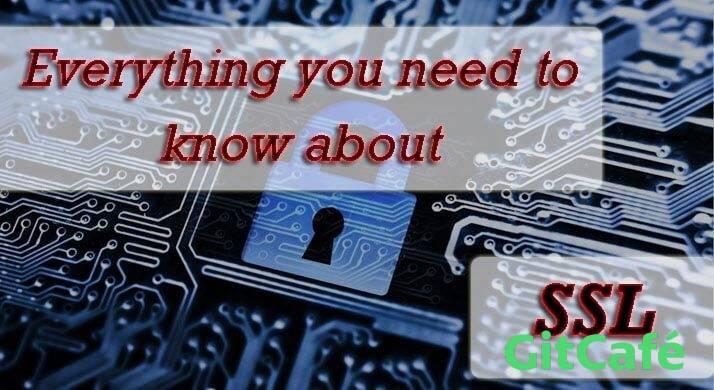 什么是 SSL?来认识一下什么是 SSL 吧