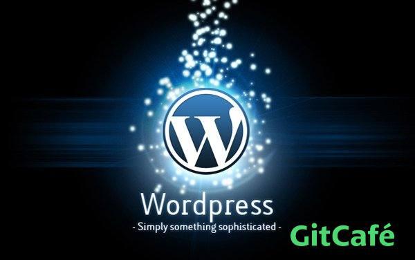 WordPress去除版本号,提高安全性-极客公园