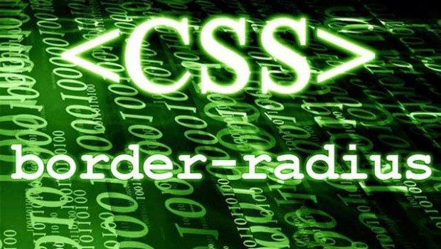 几句CSS代码让你的WordPress评论头像转起来23333