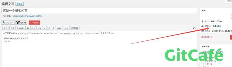 几行小代码实现一个WordPress内容模板的功能-极客公园